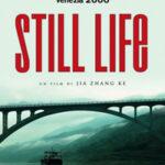 STILL LIFE (Vendita)