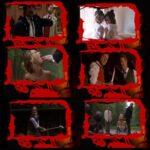 """17/4/2008 – Tom Savini e Ingrid Pitt in """"Sea of Dust"""": foto e trailer"""
