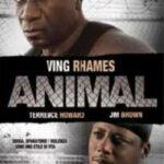 "DVD – ""Animal – Il criminale"", di David J. Burke"