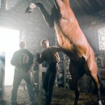 Steven Spielberg: War Horse a Capri