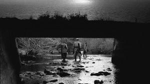 Singularity - Albert Serra