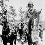 Animali nella Grande Guerra, di Folco Quilici