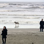 #Cannes68 – Nahid, di Ida Panahandeh