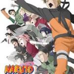 Naruto il film. Eredi della volontà del fuoco