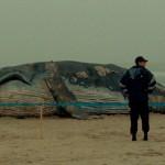 Le mille e una notte – Arabian Night è il Film della Critica