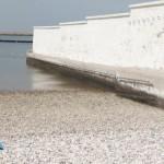 #Cannes2016 – L'ultima spiaggia, di Thanos Anastopoulos, Davide Del Degan