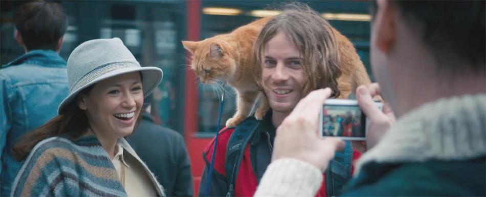 Street Cat Named Bob Bradford Cinema