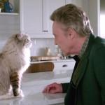 Una vita da gatto, di Barry Sonnenfeld