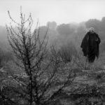 Lo sguardo di Orson Welles, di Mark Cousins