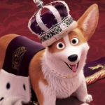 Rex – Un cucciolo a palazzo, di Ben Stassen e Vincent Kesteloot