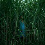 Nell'erba alta, di Vincenzo Natali