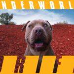 DRIFT – L'impresa postmediale di Underworld
