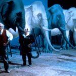 Intervista, di Federico Fellini