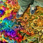 Have a Good Trip – Un buon trip: avventure psichedeliche, di Donick Cary