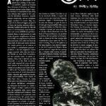 Blog OM – Subwoofer